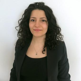 Մեղրիկ Այիթյան